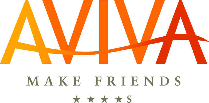 AVIVA Single Hotel make friends